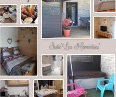 "Gérardmer - studio ""les marmottes""avec spa"